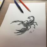 Štír kresba, scorpio drawing