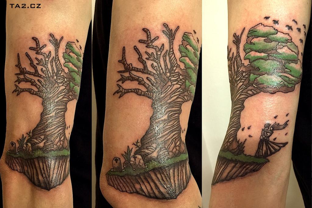 jiproch_strom